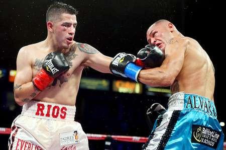 Brandon Rios vs Mike Alvarado en Vivo